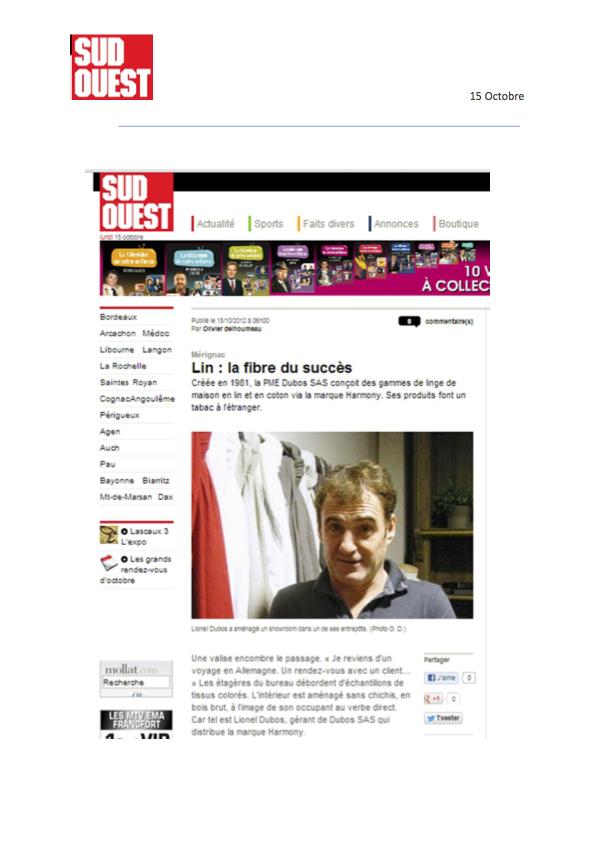 www.sudouest.fr.jpg