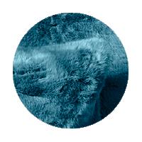 FF 29 Lapin Bleu